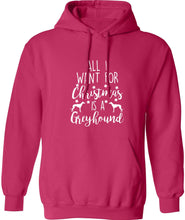 All I want for Christmas is a greyhound adults unisex pink hoodie 2XL