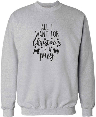 All I want for Christmas is a pug adult's unisex grey sweater 2XL