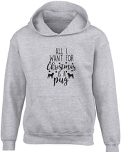 All I want for Christmas is a pug children's grey hoodie 12-13 Years
