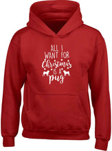 All I want for Christmas is a pug children's red hoodie 12-13 Years