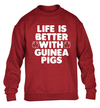 Life is better with guinea pigs children's grey  sweater 12-14 Years