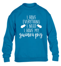 I have everything I need, I have my guinea pig children's blue  sweater 12-14 Years