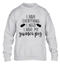 I have everything I need, I have my guinea pig children's grey  sweater 12-14 Years