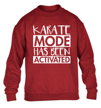 Karate mode activated children's grey sweater 12-14 Years