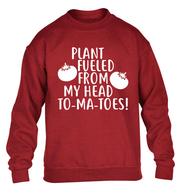 Plant fueled from my head to-ma-toes children's grey sweater 12-14 Years