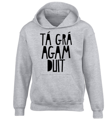 T‡ gr‡ agam duit - I love you children's grey hoodie 12-13 Years