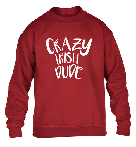 Crazy Irish dude children's grey sweater 12-13 Years