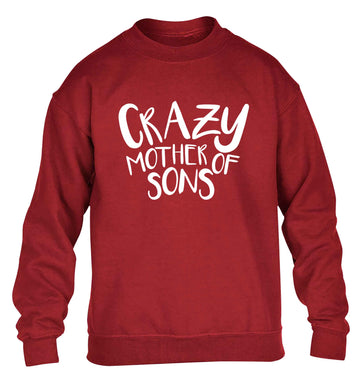 Crazy mother of sons children's grey sweater 12-13 Years