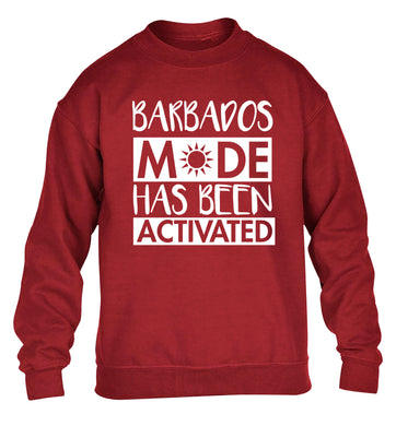 Barbados mode has been activated children's grey sweater 12-13 Years