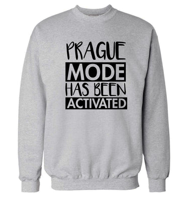 Prague mode has been activated Adult's unisex grey Sweater 2XL