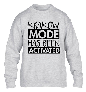 Krakow mode has been activated children's grey sweater 12-13 Years