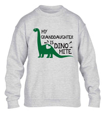 My granddaughter is dinomite! children's grey sweater 12-13 Years