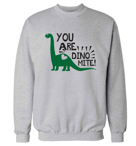 You are dinomite! Adult's unisex grey Sweater 2XL