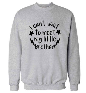 I can't wait to meet my sister! Adult's unisex grey Sweater 2XL