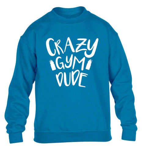 Crazy gym dude children's blue sweater 12-13 Years