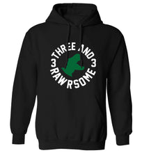 Three and rawrsome adults unisex black hoodie 2XL