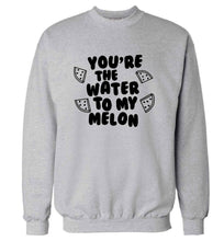 You're the water to my melon adult's unisex grey sweater 2XL