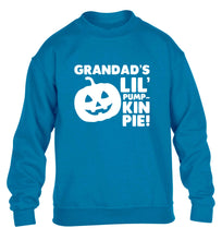 Daddy's lil' pumpkin pie children's blue sweater 12-13 Years