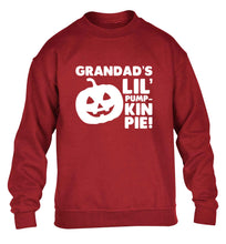 Daddy's lil' pumpkin pie children's grey sweater 12-13 Years