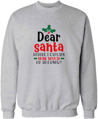 Santa before I explain how much do you know? adult's unisex grey sweater 2XL