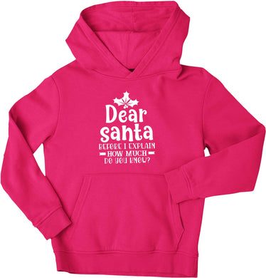 Santa before I explain how much do you know? children's pink hoodie 12-13 Years