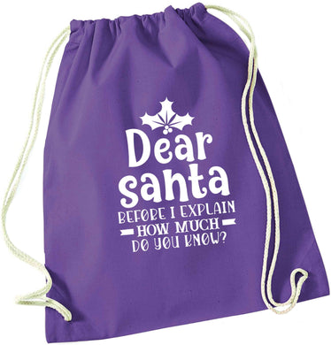 Santa before I explain how much do you know? purple drawstring bag