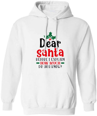 Santa before I explain how much do you know? adults unisex white hoodie 2XL