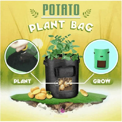 Potato Plant Bag