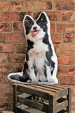 Adorable Border Collie Shaped Cushion Dog Cushions - Adorable Cushions