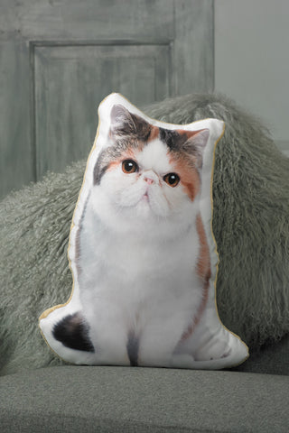 Adorable Exotic Shorthair Cat Shaped Cushion Cat Cushions - Adorable Cushions