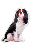 Adorable Tricolour Cavalier King Charles Spaniel Shaped Cushion Dog Cushions - Adorable Cushions
