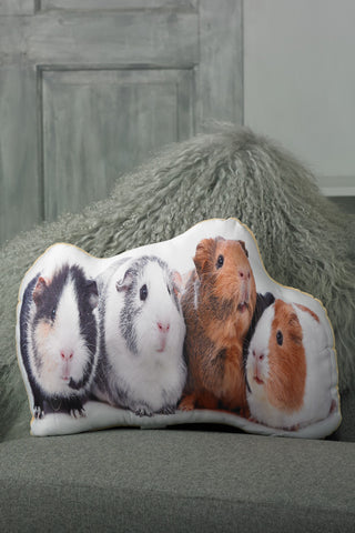 Adorable Guinea Pig Shaped Cushion