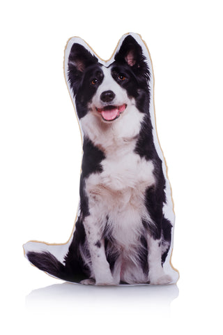 Adorable Border Collie Shaped Midi Cushion Dog Midi - Adorable Cushions