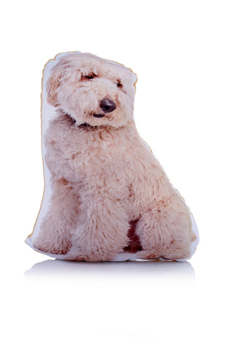 Adorable Labradoodle Shaped Midi Cushion Dog Midi - Adorable Cushions