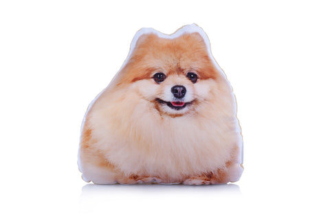 Adorable Pomeranian Shaped Midi Cushion Dog Midi - Adorable Cushions