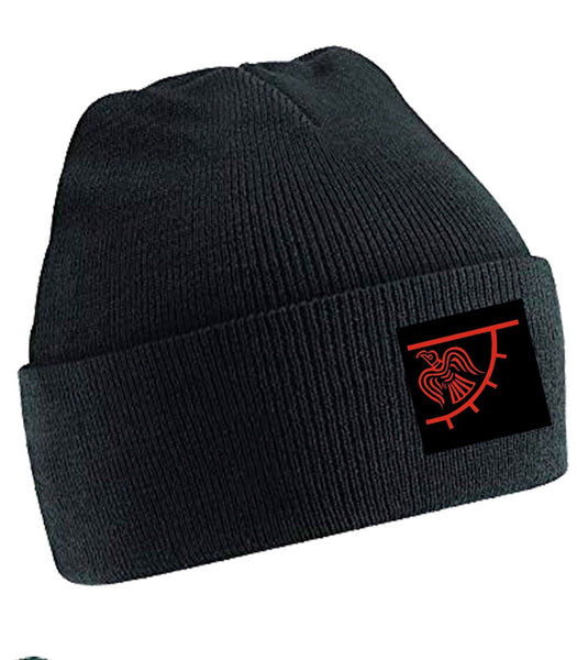 Raven Banner Beanie (Black, Blue and Green)