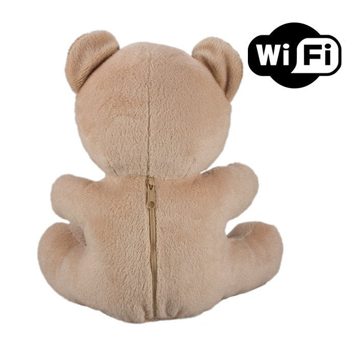 Teddy Bear Camera