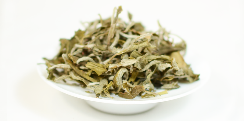 KBBK House White Tea