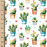 "Remnant Potted Cactus 19"" Vinyl"
