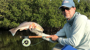 Redfish with fly rod and reel.