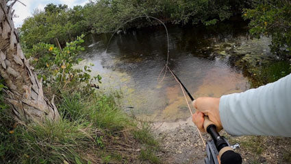 Mending fly line around an obstruction.