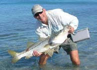 Sanibel Island Snook