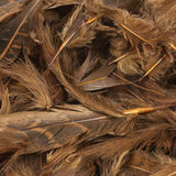 Hungarian Partridge Feathers (Loose) - Brown