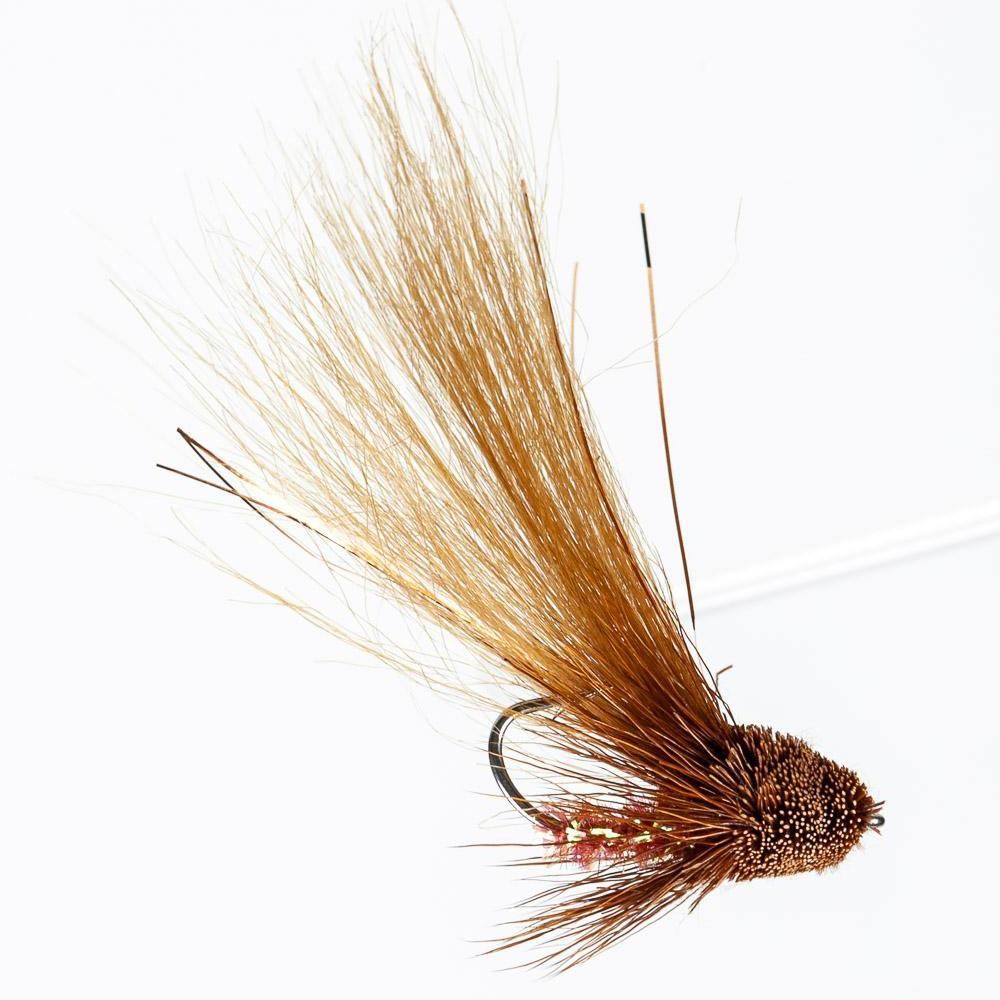 Chico's River Shrimp - Brown