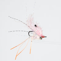 EP Ghost Shrimp - Pink, Bead Chain Eye