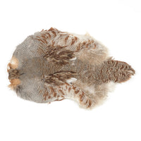 Hungarian Partridge Skin #1 - Natural