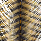 MFC Barred Ostrich Plume - Yellow/Black