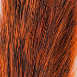 Squirrel Tail - Orange