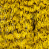 Whiting American Rooster Cape - Grizzly Dyed Yellow