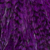Whiting Streamer Pack - Grizzly Dyed Purple